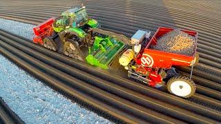 Potato Planting  | Deutz-Fahr Agrotron 7250 TTV on Row-Crop Tracks + Dewulf Miedema belt planter