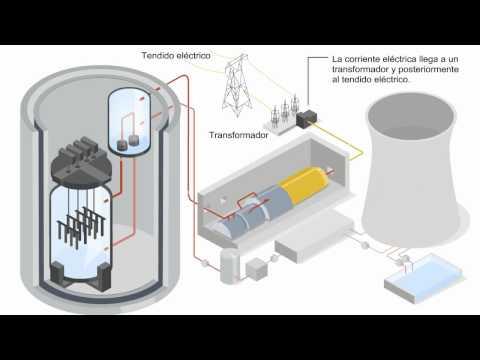 ¿Cómo funciona una central nuclear ?