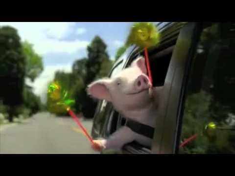 New Geico Piggy Commercial Remix video