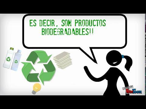 Programa de protección al medio ambiente