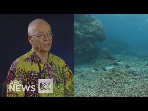 Australia heading for 'Mediocre Barrier Reef', says Dr Karl