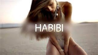 HABIBI - AliMonkey And LEO.K (New Arabic Music 2018) Promo Video