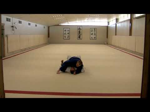 judo grappling-mount to sankaku