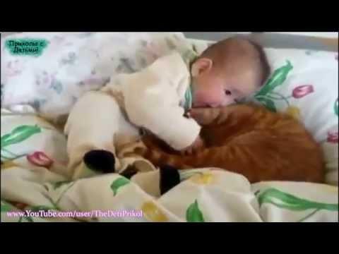 Самое смешное видео про детей и животных! Ржач, бесподобно!