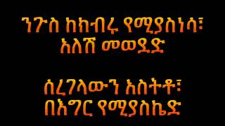 Dan Admasu - Mesay መሳይ (Amharic With Lyrics)