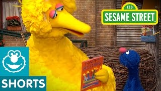 Sesame Street: Celebrate Big Bird's Birthday | Give the Gift of Education