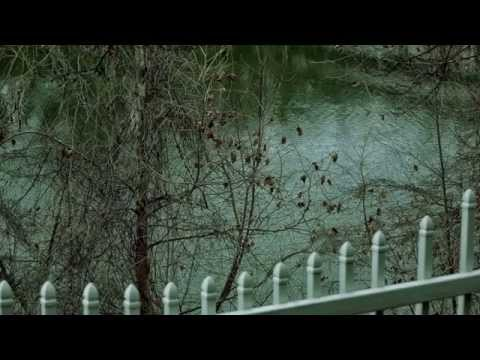 Kenny Wayne Shepherd - Riverside