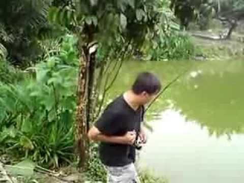Pancing ikan Patin 9.5kg di Kolam Kundang