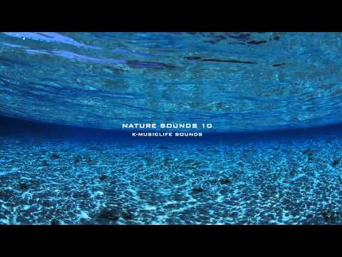 Nature Sound 10 - THE MOST RELAXING SOUNDS -