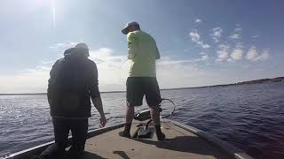 MASSIVE Northern WI Muskie FIGHT