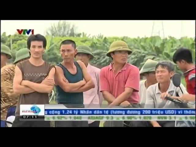 [VIDEO] Bản tin Tài chính kinh doanh sáng 21/8/2014
