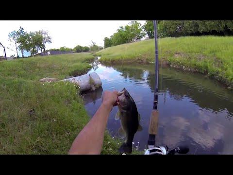 ZOOM 3'' swimming super fluke (Bass Fishing) 720p HD
