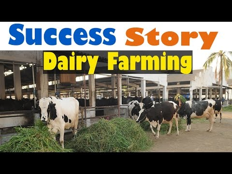 Success Story of a Dairy Farm - Hindi (2015) | Dairy Farming In India