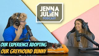 Podcast #230 - Our Experience Adopting Our Greyhound Bunny