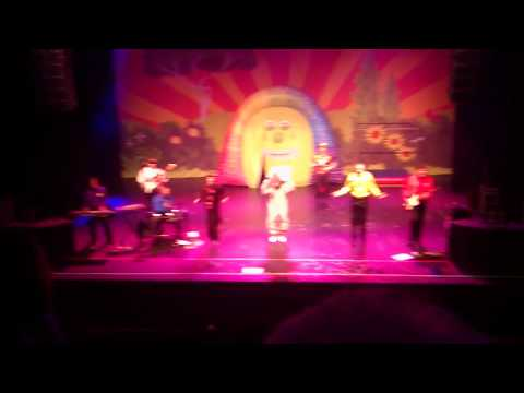 The Wiggles Manchester 2012 Monkey Dance video