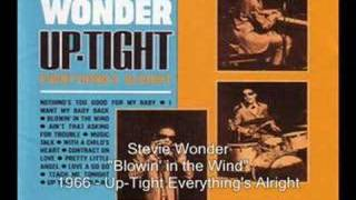 Video Blowin in the wind Stevie Wonder