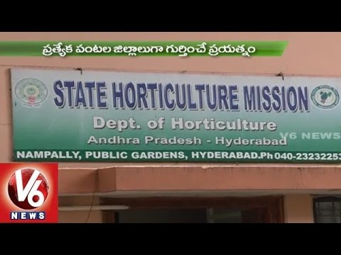 Sagubadi | Techniques for Vegetable cultivation | Department of Horticulture - V6 News