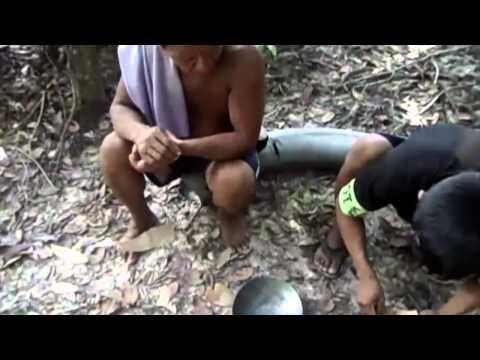 Minería Ilegal en el Guainía