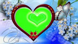 Wedding Green beautiful butterfly Dil green frame background screen effect HD video 36