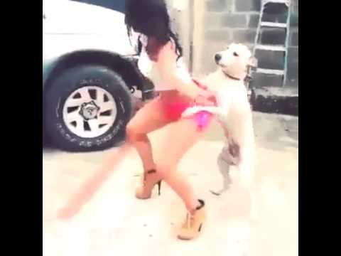 Puta mujer youtube perros