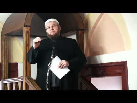 Shaka: TARZANI - Irfan Salihu