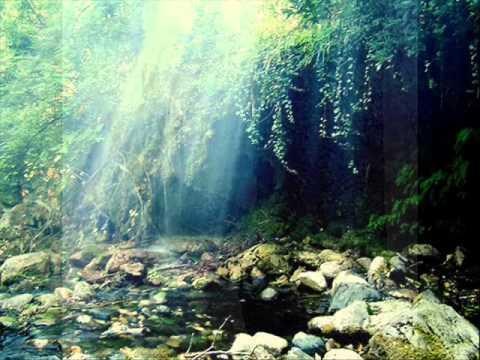suoni per la natura