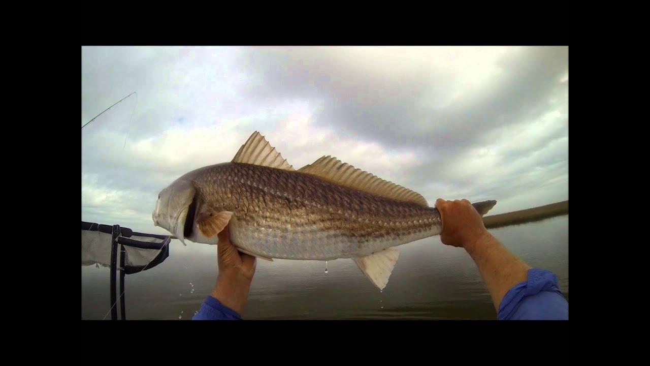 Bad weather bulls still eat fly fishing in louisiana youtube for Louisiana saltwater fishing license