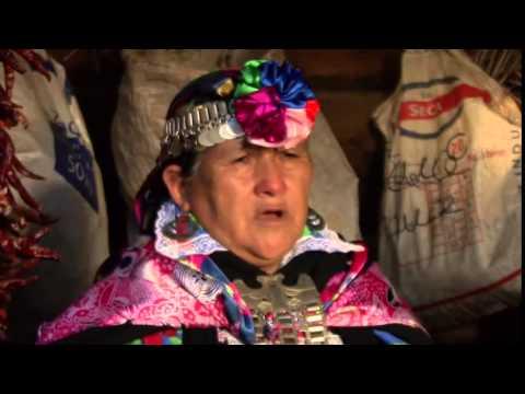 MAPUCHE DUNGUN   La Palabra María Teresa Panchillo   poeta mapuche