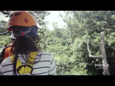 Move: Flight of the Gibbon in Cambodia