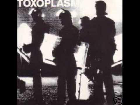 Toxoplasma - Fuehrer
