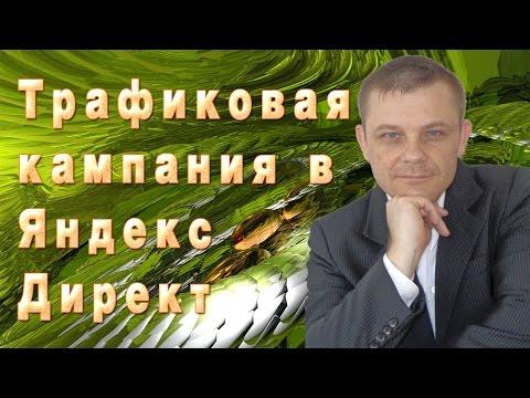 Трафиковая кампания в Яндекс Директ (Евгений Вергус)