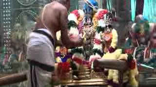 29  Oct 2014 Sri Balaji Fanaswadi Brahmothsavam Sevakalam Satru Thiru Ther