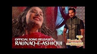 download lagu Raunaq-e-ashiqui  Punjab Nahi Jaungi  Ary Films gratis