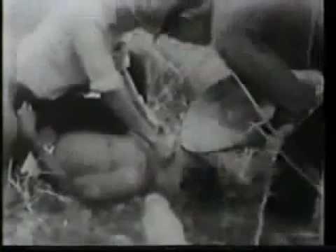 Minh chứng sự dã man và tội ác của lính ngụy VNCH thumbnail