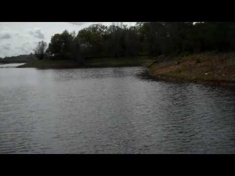 Lake erie fishing reportlake erie walleye steelhead for Lake erie fishing hotline