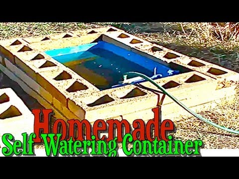 Homemade Self Watering Container Gardening Construction Using A Rain Barrel Youtube