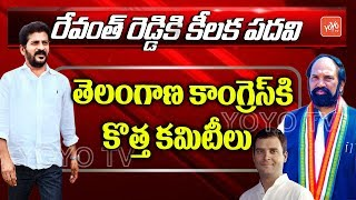 Revanth Reddy as Telangana Congress Working President | Congress Appointed New Committees
