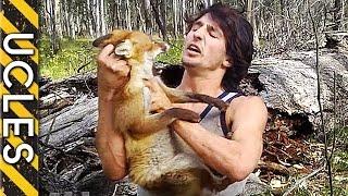 Fox captured barehanded