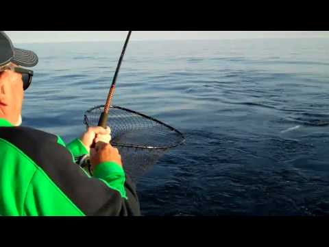 Lake Michigan Charter Fishing for Salmon. Visit Sheboygan Wisconsin
