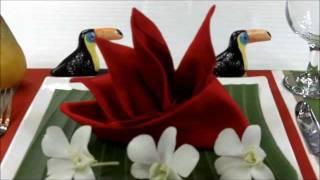 Hur man viker en paradisfågel av en servett