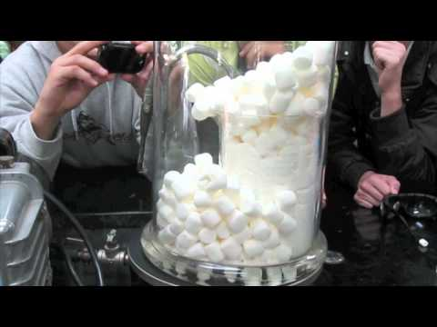 400 Marshmallows in a Vacuum