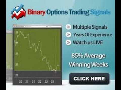 Binary options trader jobs