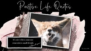 Positive Life Quotes   For Inspiration and Motivation1 | Quotes about Life