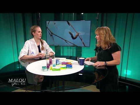 All fler drabbas av pollenallergi - men det går att vaccinera sig - Malou Efter tio (TV4)