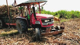 Mahindra Arjun 555 tractor stuck with fully loaded sugarcane trolley  |Mahindra tractor power| CFV|