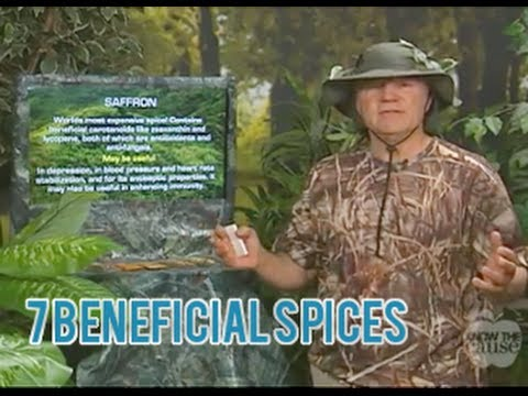 7 Amazingly Healthy Spices and Their Common Uses - Doug Kaufmann  - 4/18/14 - (9331)