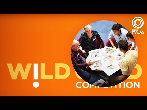 Schmidt-MacArthur Fellowship Wild Card Competition 2015