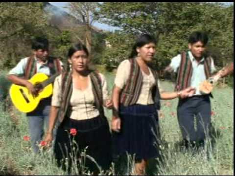 Los Amantes Del Charango y Las Cholitas Del Amor-Sauce LLorón