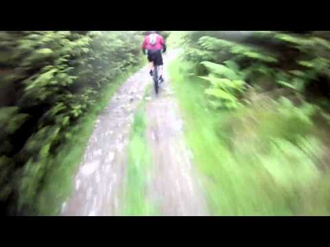 Grizedale Forest MTB - June 2011