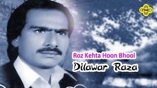 Dilawar Raza  Roz Kehta Hoon Bhool  Pakistani Regi